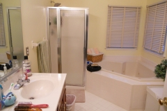 Downingtown-Bath-remodel-before